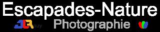 Un site utilisant WordPress pour vous faire partager mes photos de Nature Faune et Flore.