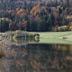 Les Lésines couleurs d'automne vignette